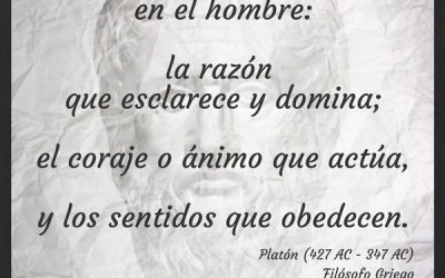 Frase célebre Platón – La razón